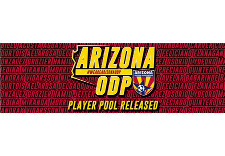 pLAYER-pOOL